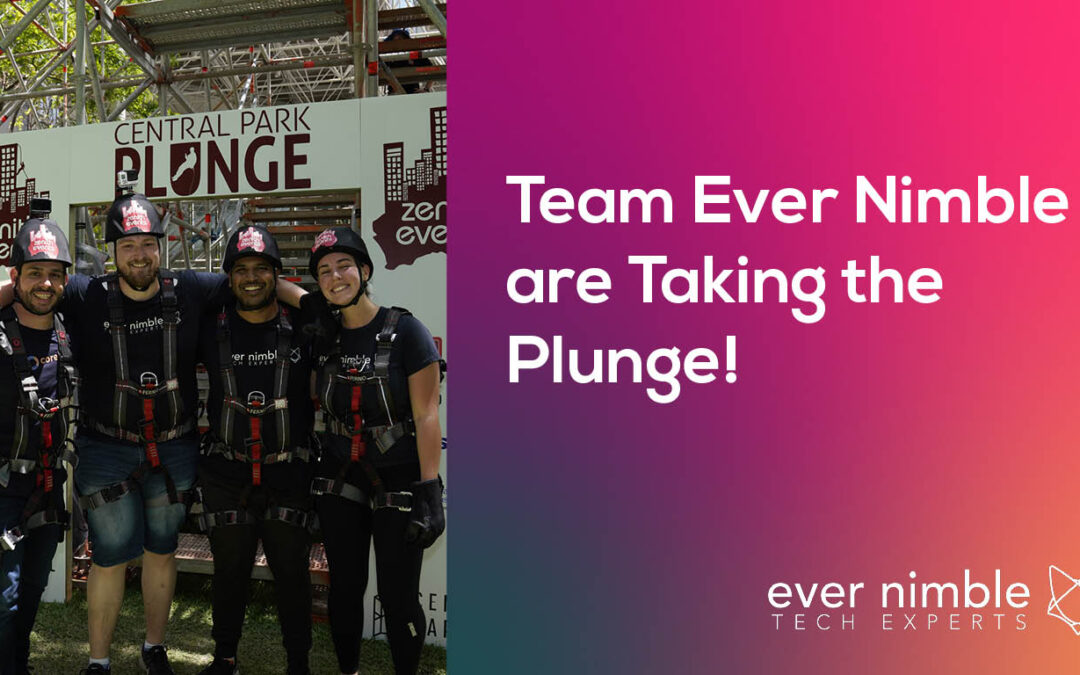 Team Ever Nimble are Taking the Plunge!